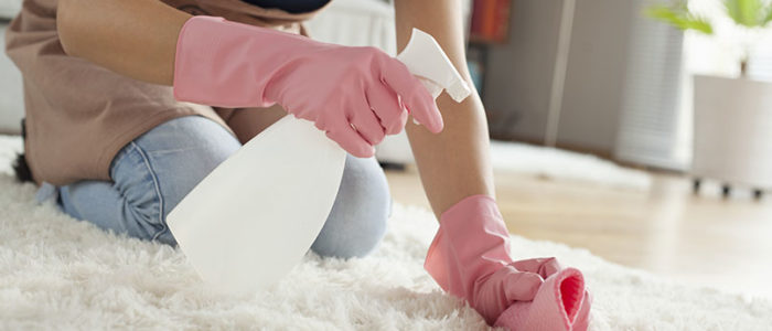 The Basics of Cleaning Your Home