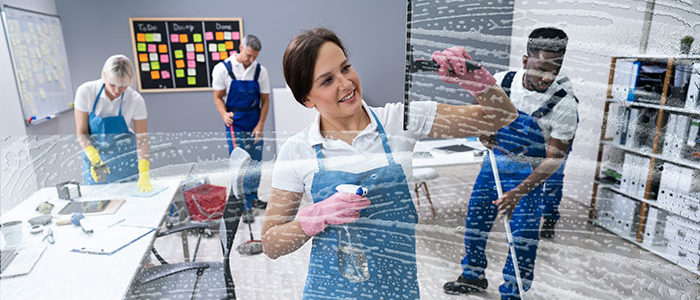 Professional Maid Service Company